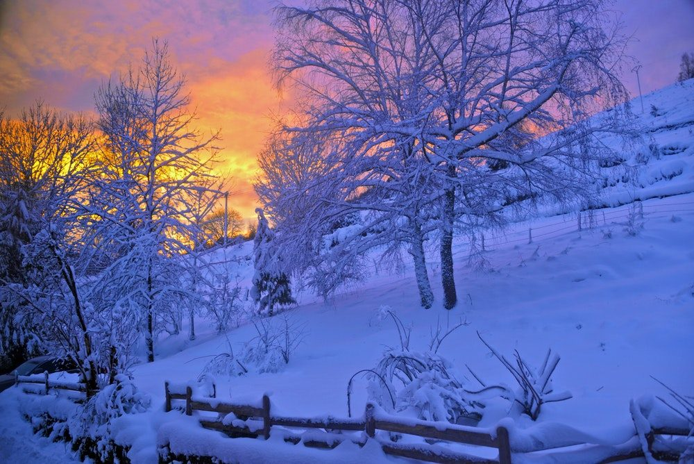 winter eye care sunset and snow